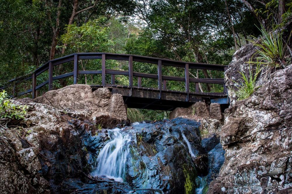 DSC_8193-Kondalilla Falls.jpg