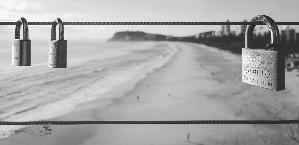 014_366 Black and White.jpg