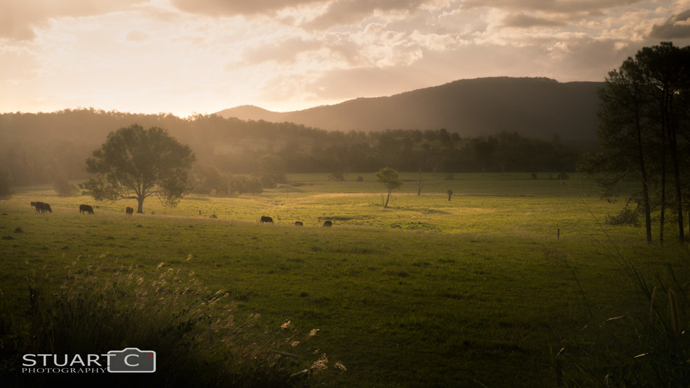 Sunlight playing shadow games on rolling hills and pastures over farmland between Kilcoy and Woodford