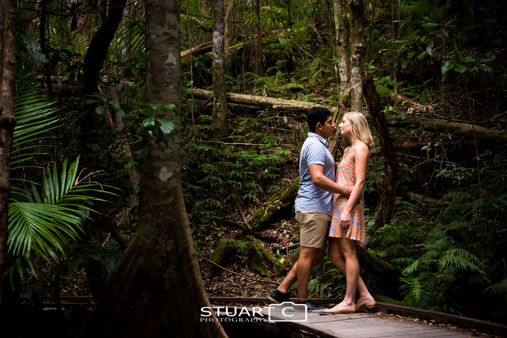 engaged couple in rainforest on timber boardwalk at Kondalilla Falls Sunshine Coast Hinterland