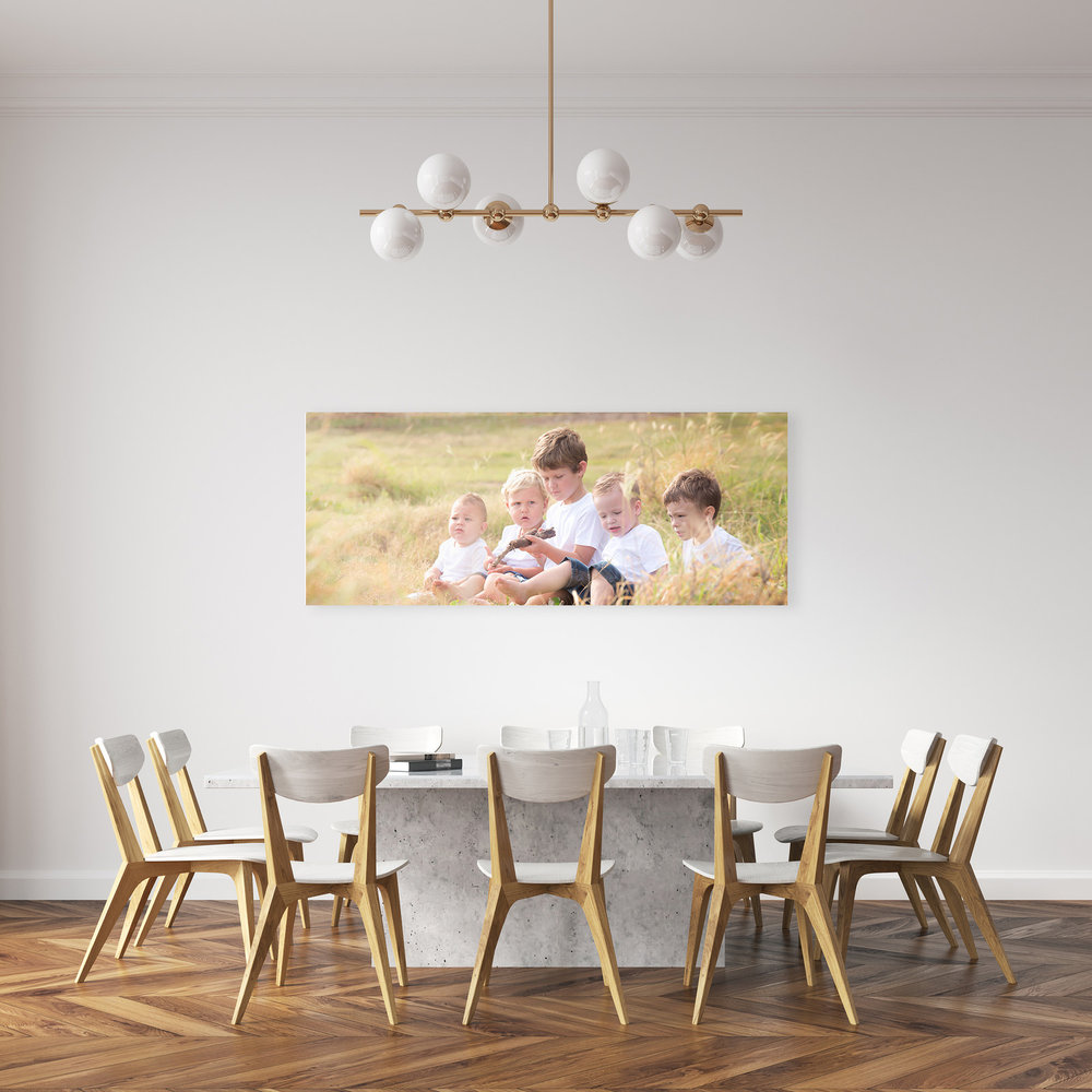 60x24 inch canvas family portrait of boys sitting in long grass by caboolture outdoor family photographer