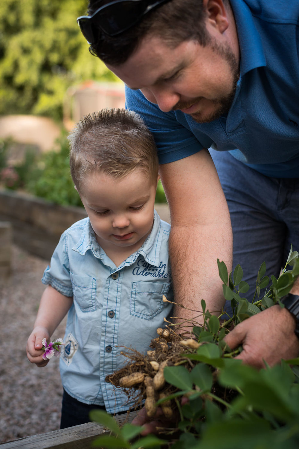 Outdoor Family photos in the back yard at home, Caboolture Photographer