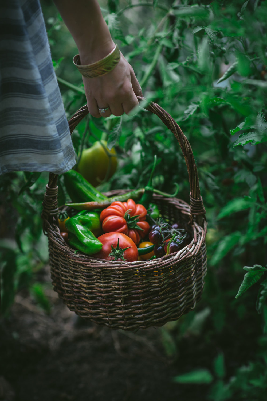 Food and Drink by Eva Kosmas Flores-42.jpg