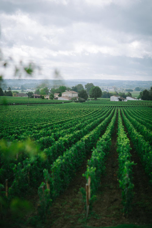 Bordeaux First We Eat Workshop by Eva Kosmas Flores-27.jpg