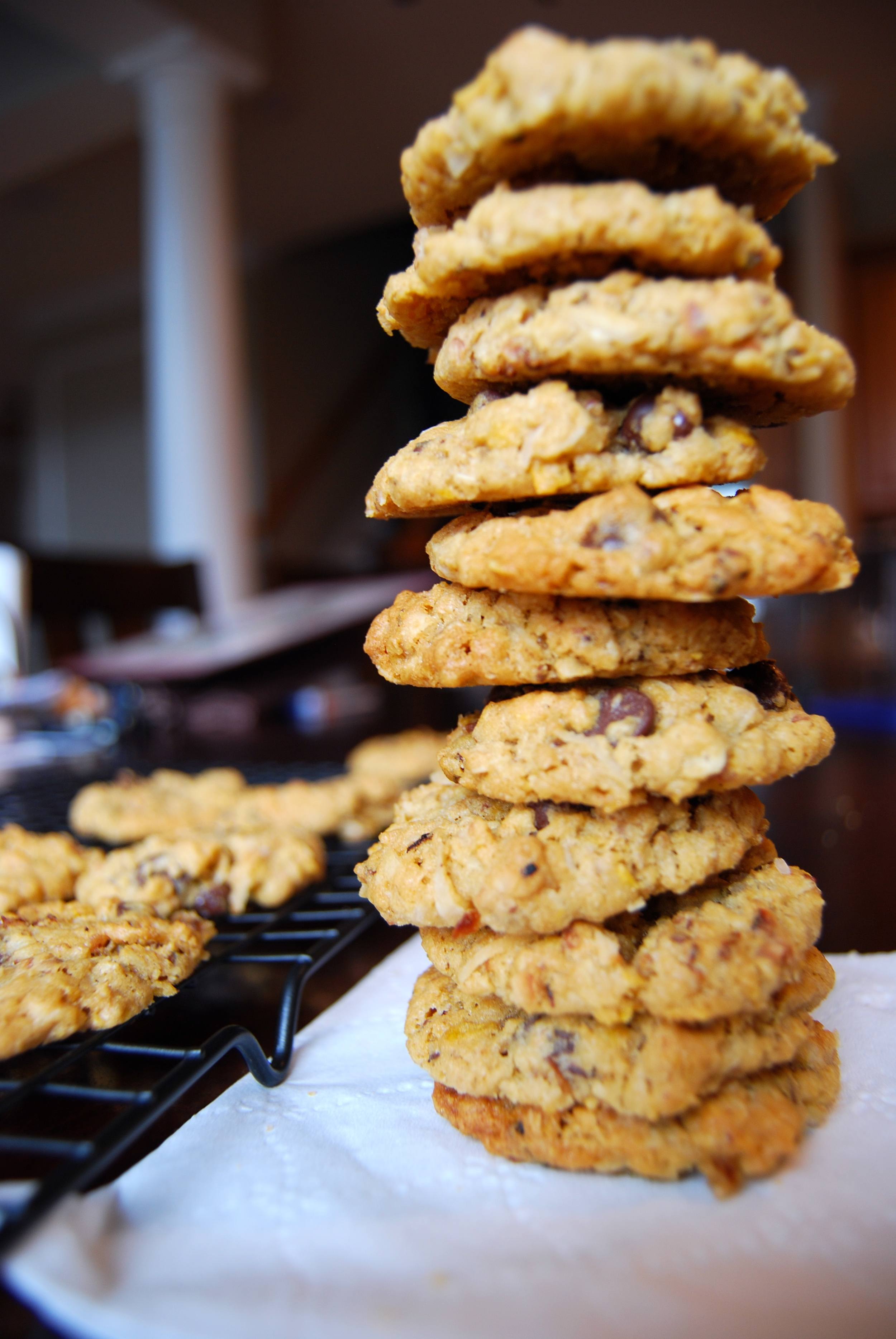 chewy crispy coconut cookies — doughing it right