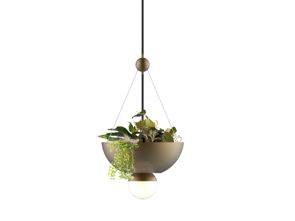 Globe Light Hanging Planter.Front Ortho.With Plants.jpg
