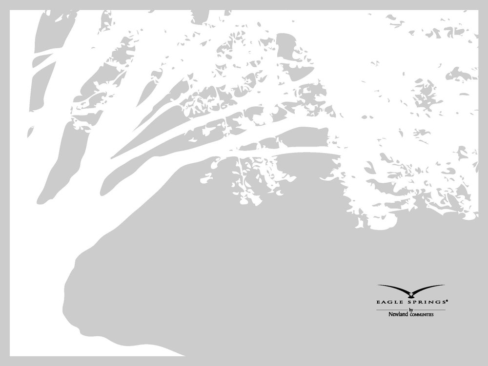 ESp_Brochure_Page_01.jpg