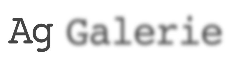 Ag Galerie_logo.jpeg