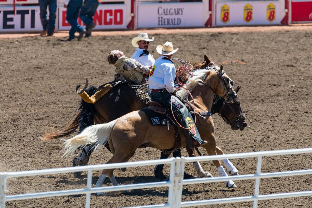 2017 07 07 Calgary Stampede-105.jpg