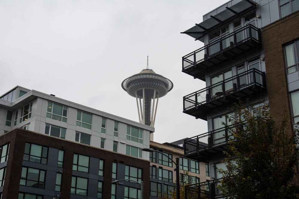 2016 10 26 Seattle II Rain-3.jpg