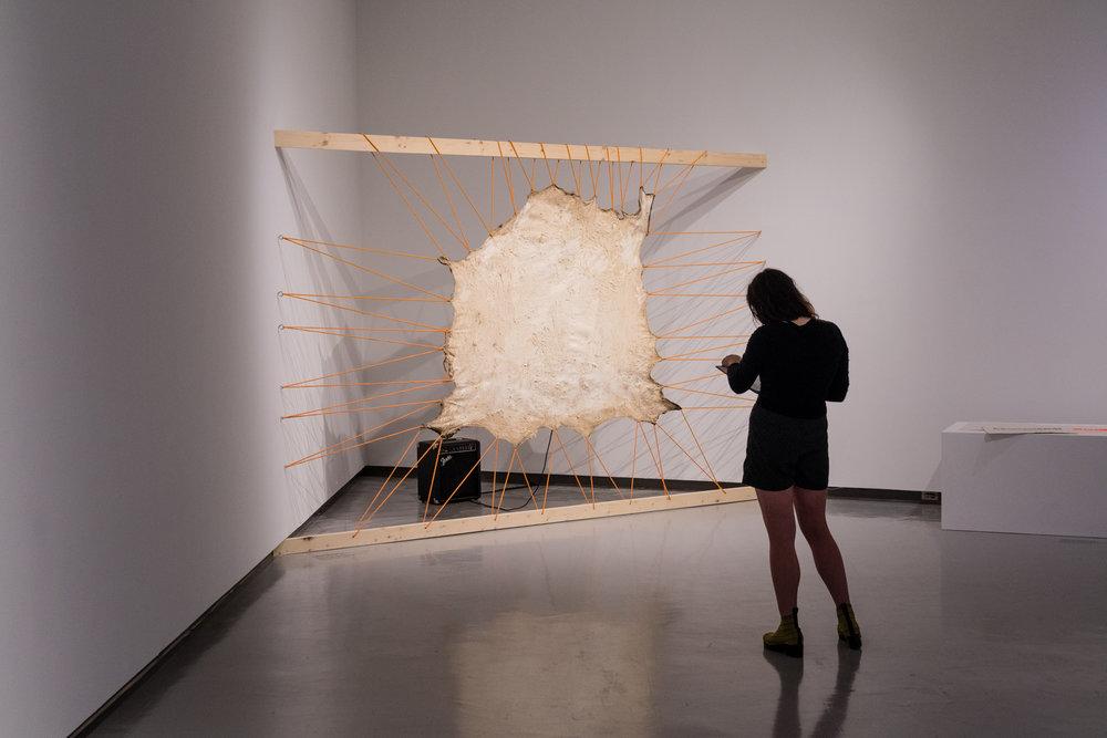 2017 10 21 Winnipeg Art Gallery-23.jpg