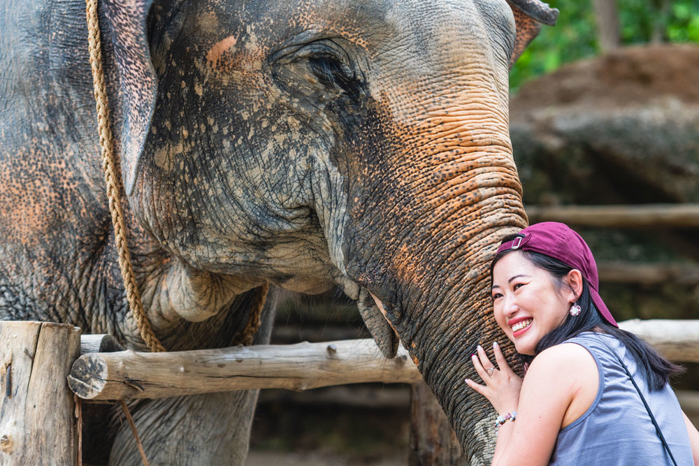 2018 04 26 Elephant Retirement Park-33.jpg