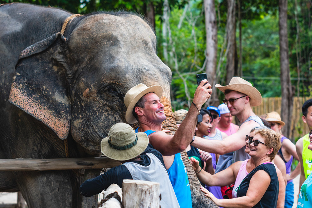 2018 04 26 Elephant Retirement Park-54.jpg