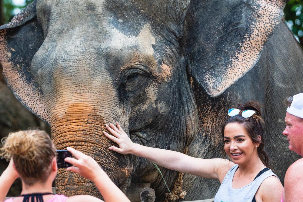 2018 04 26 Elephant Retirement Park-89.jpg