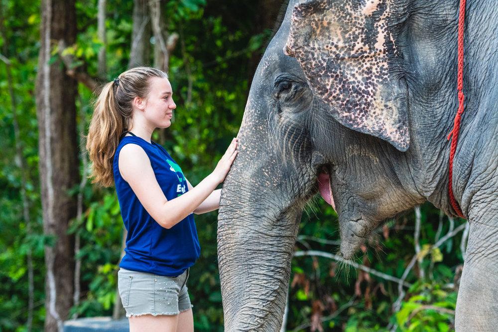 2018 04 26 Elephant Retirement Park-327.jpg