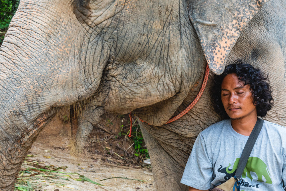 One of the guys who worked at the park.  He had a deep love for the elephants.