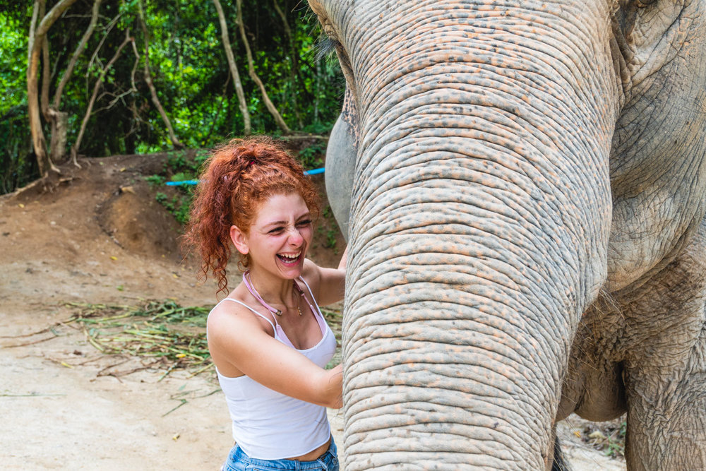 This girl absolutely loved the elephants.  They were one of the main reasons why her and her boyfriend came to this side of the world from Brazil.