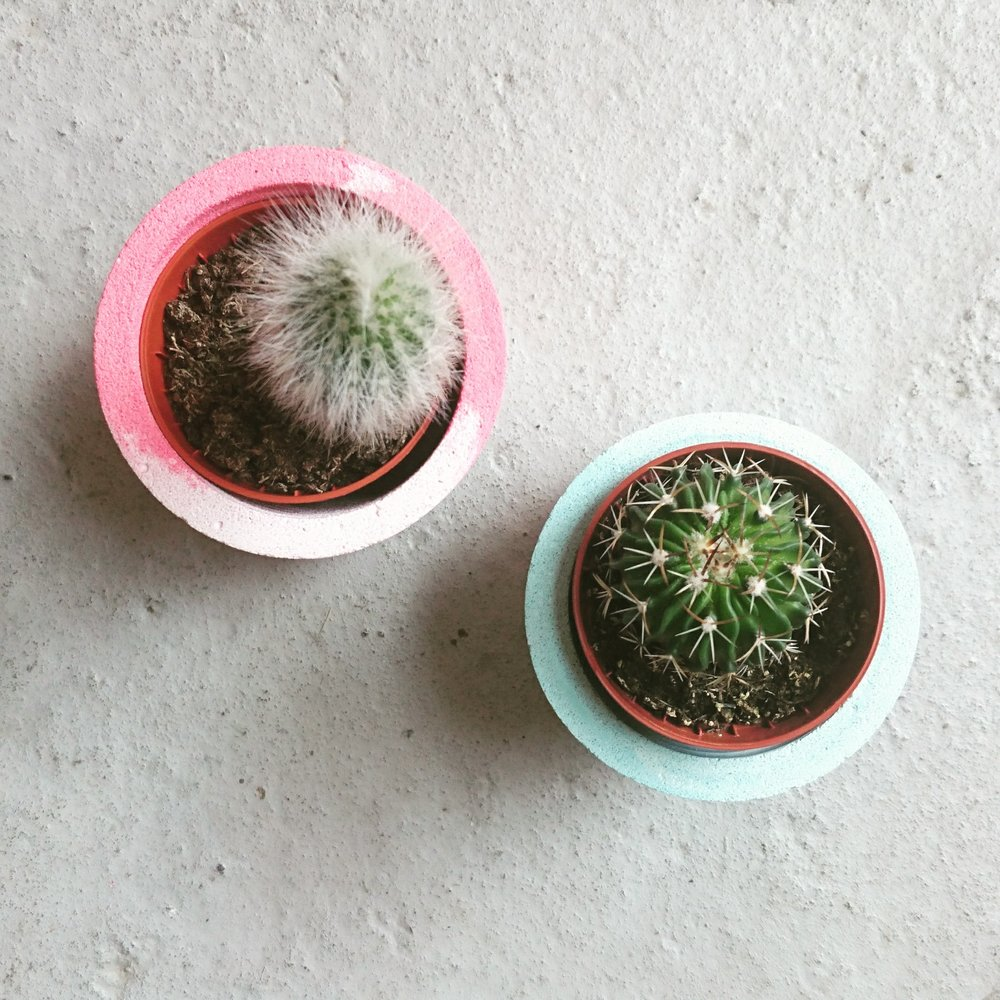 Cacti Pot making