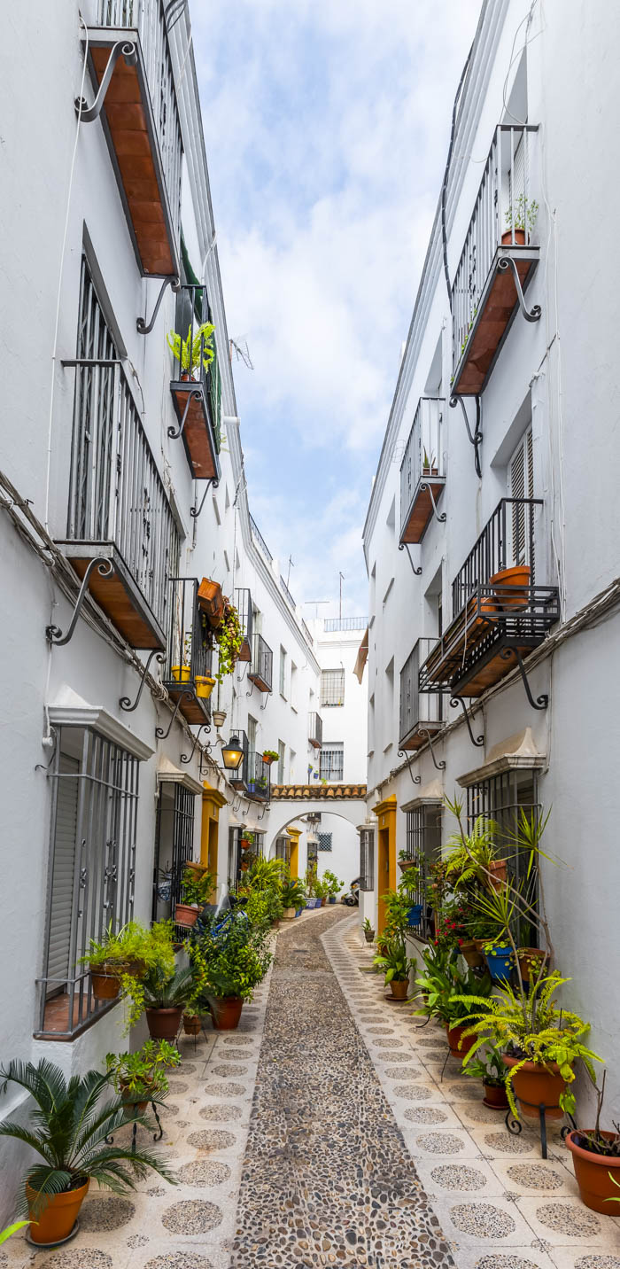 Calle Indiano