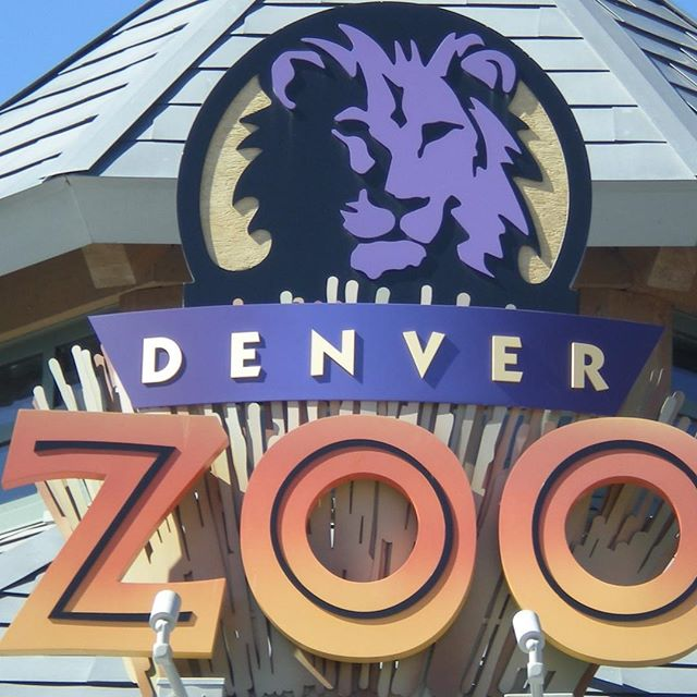 We are growing in leaps and bounds. To add to our list of wonderful customers , we are now doing the laundry for the Denver zoo! . . . #laundromat #hardwork #gratitude #growth #family #fun #soapsuds