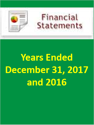 financial statement 2017.PNG