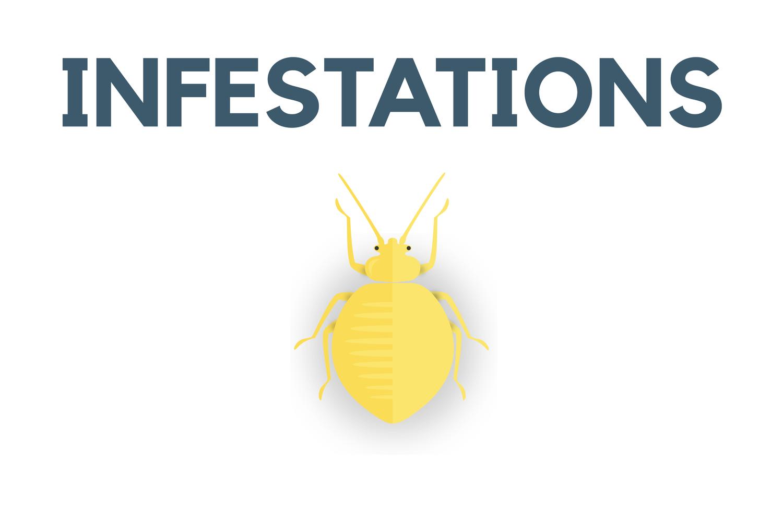 Infestations — NUEM Blog