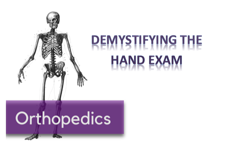 Demystifying The Hand Exam Nuem Blog Download the hands, people png on freepngimg for free. nuem blog