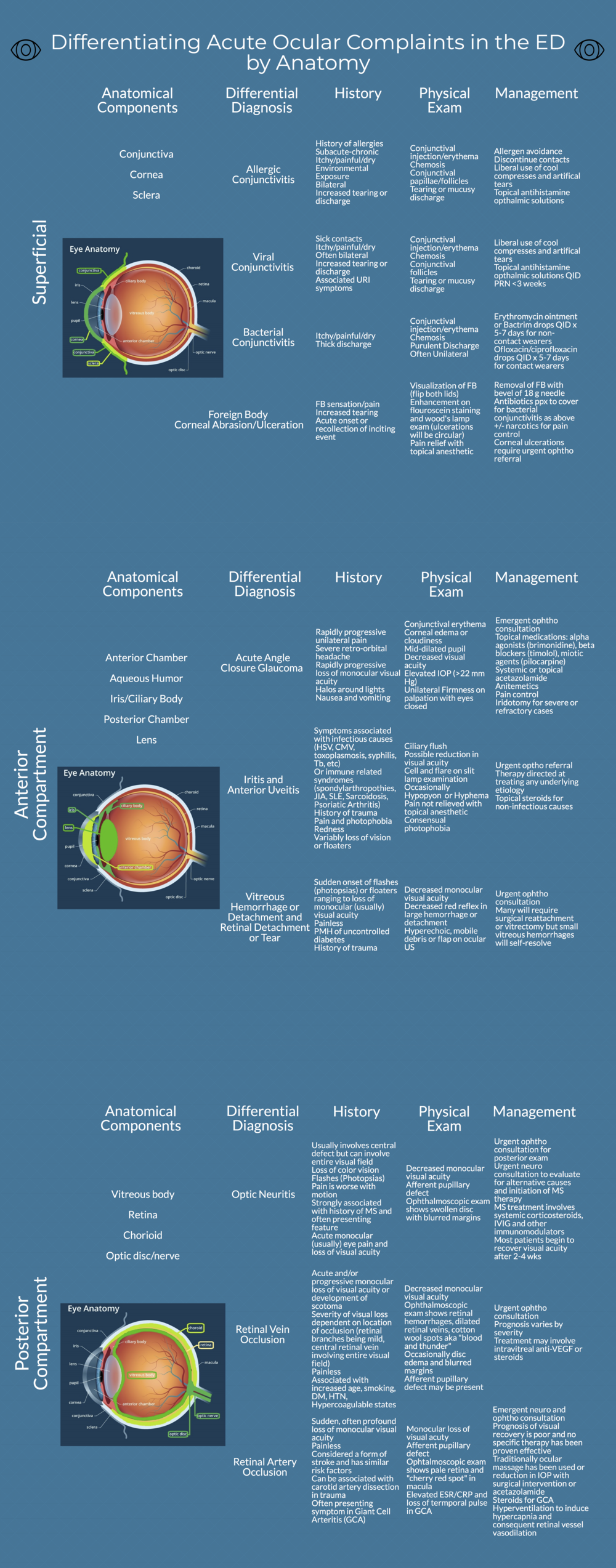 Ocular Complaints By Anatomy new format (1).png