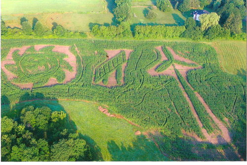 Our Farm Corn Maze
