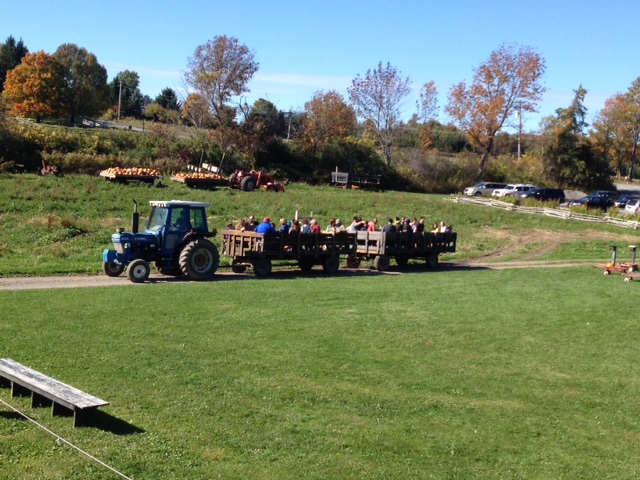 Pumpkins & Hayride - Take a scenic wagon ride through fields until you arrive at the pumpkin field filled with lots of pumpkins.