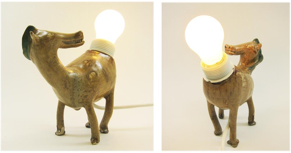 Butt Lamp (horse), 2015