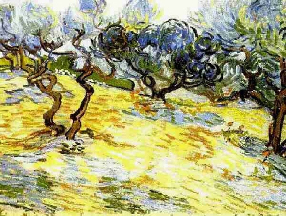 olive-trees-bright-blue-sky-1889