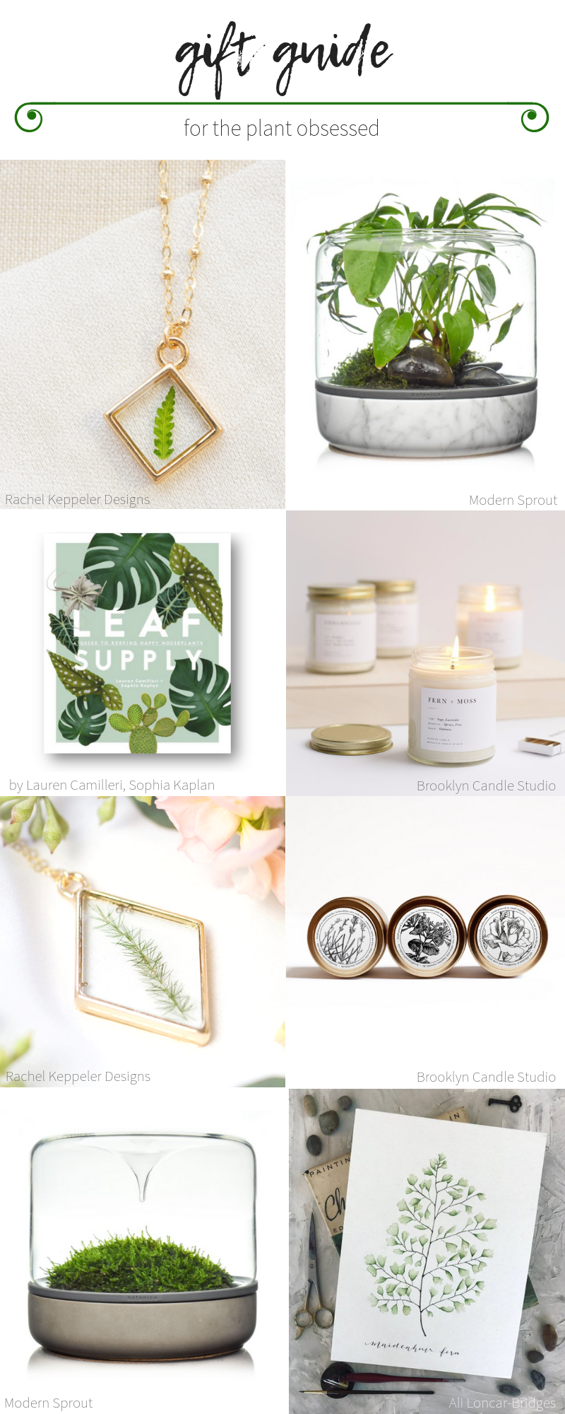 For the love of Ferns Gift Guide
