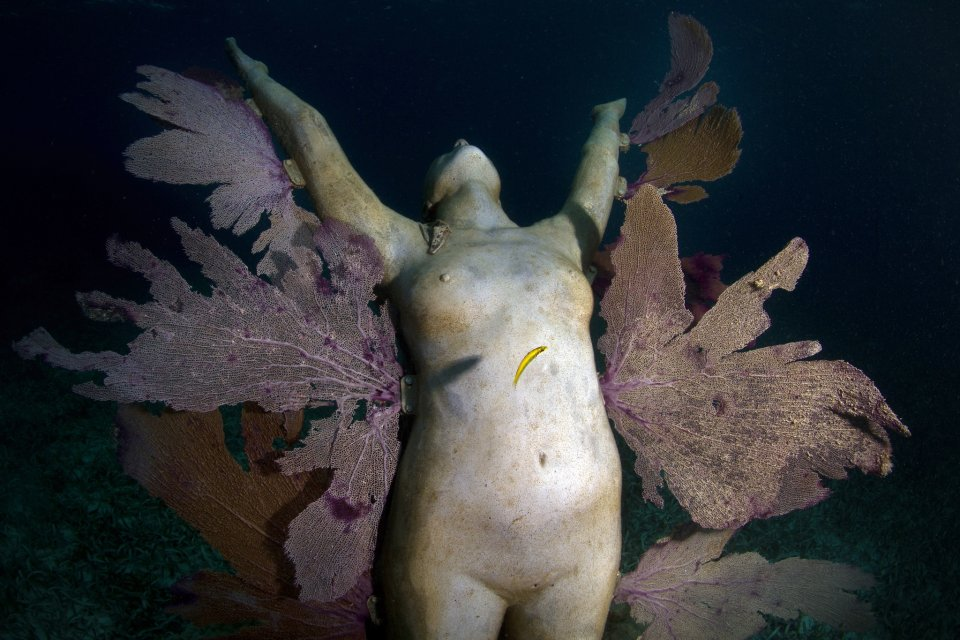 57-overview-reclamation-mexico-jason-decaires-taylor-sculpture.jpg