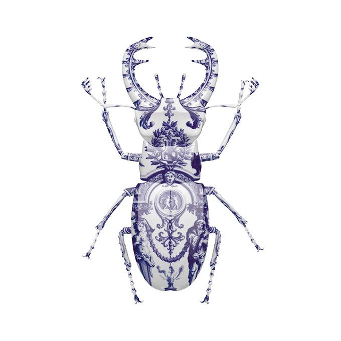 delft-stag-beetle-retina.jpg