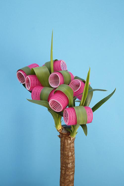 plant_03.jpg