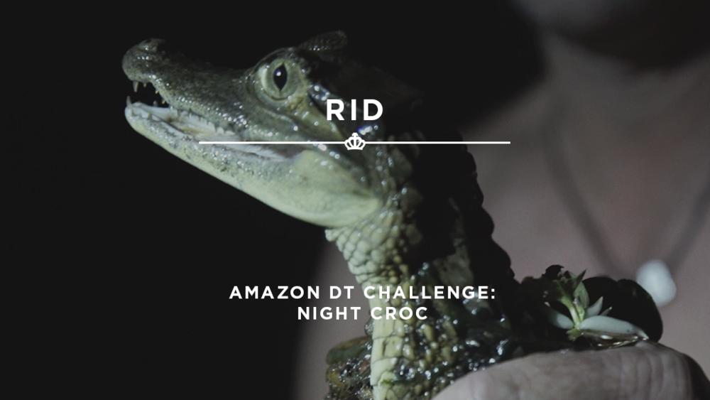 16X9_StillImage_RID - NightCroc.png