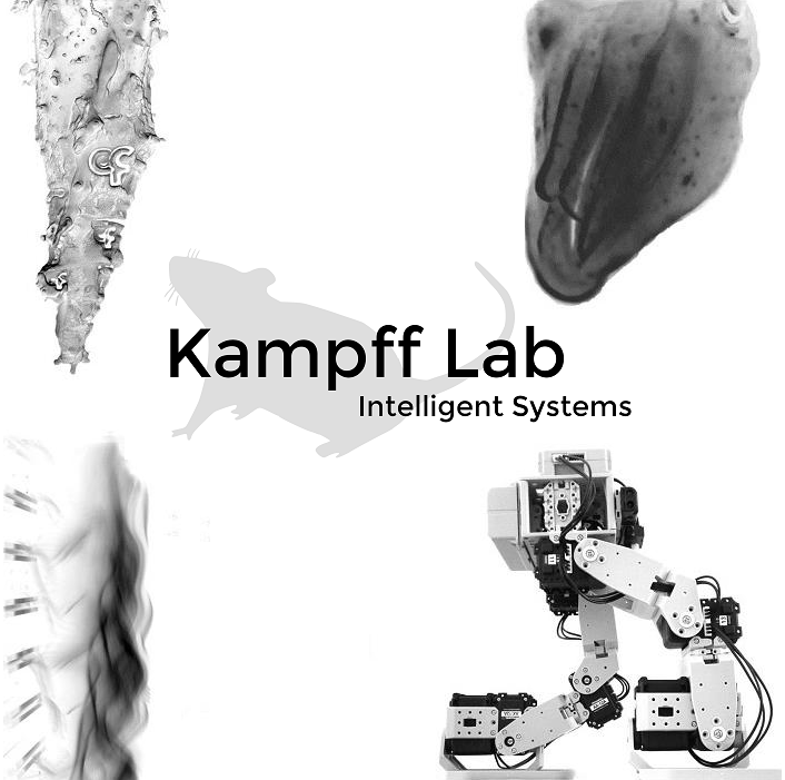 kampff-lab-overview-logo