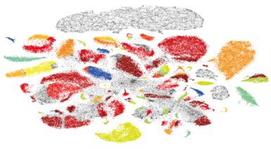 T-SNE visualization of large-scale neural recordings