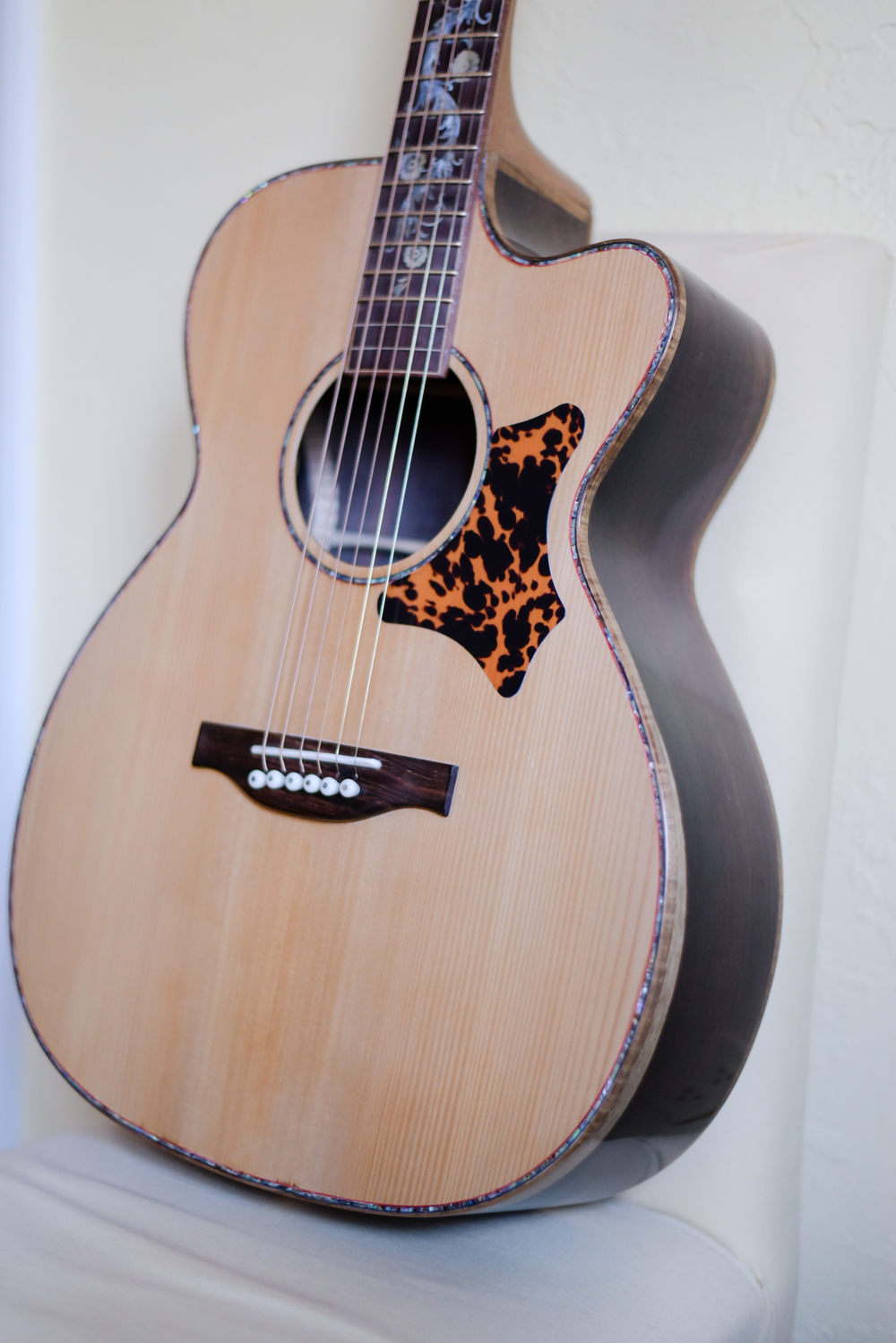 Hawkins Guitar Sapwood