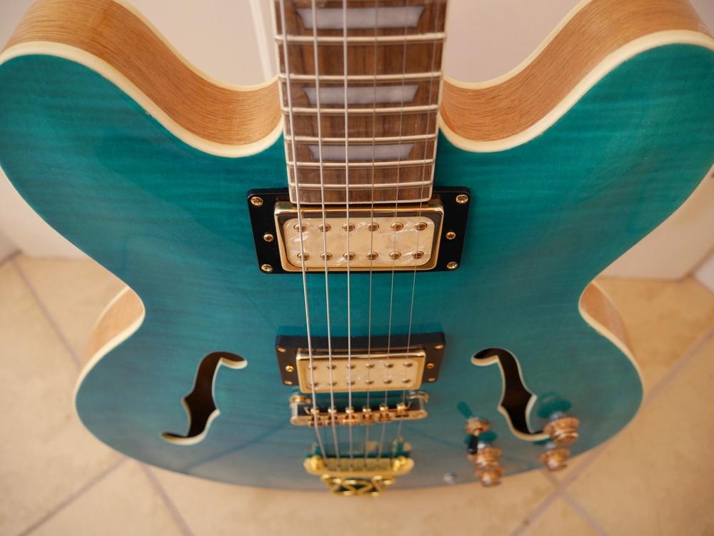 Hawkins Hollow Body Guitar Top