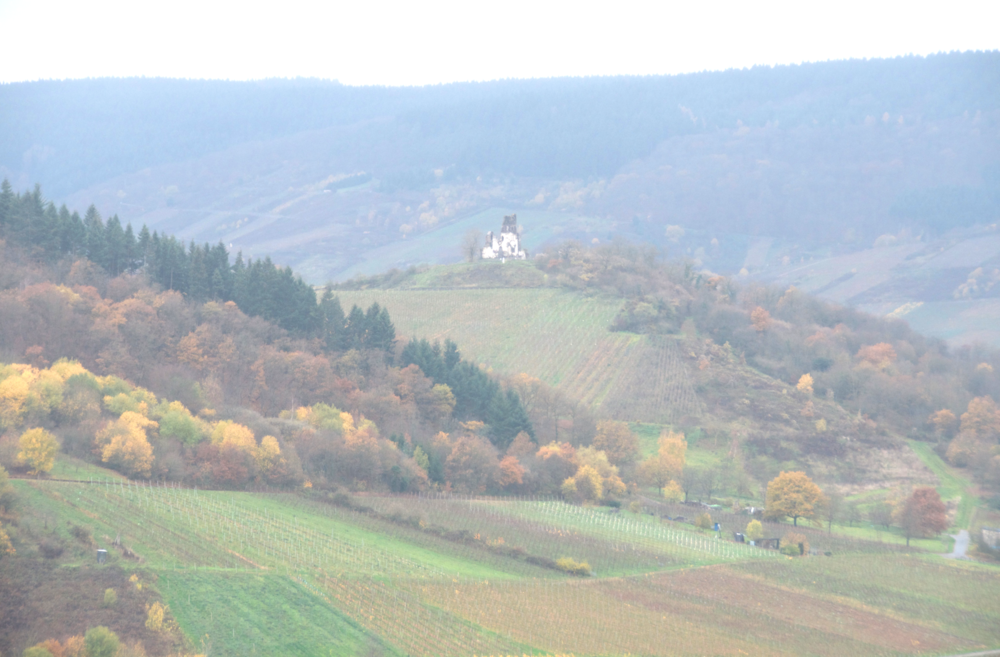 nature-hiking-traben-trarbach.png