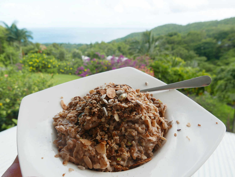 apple-protein-porridge.png