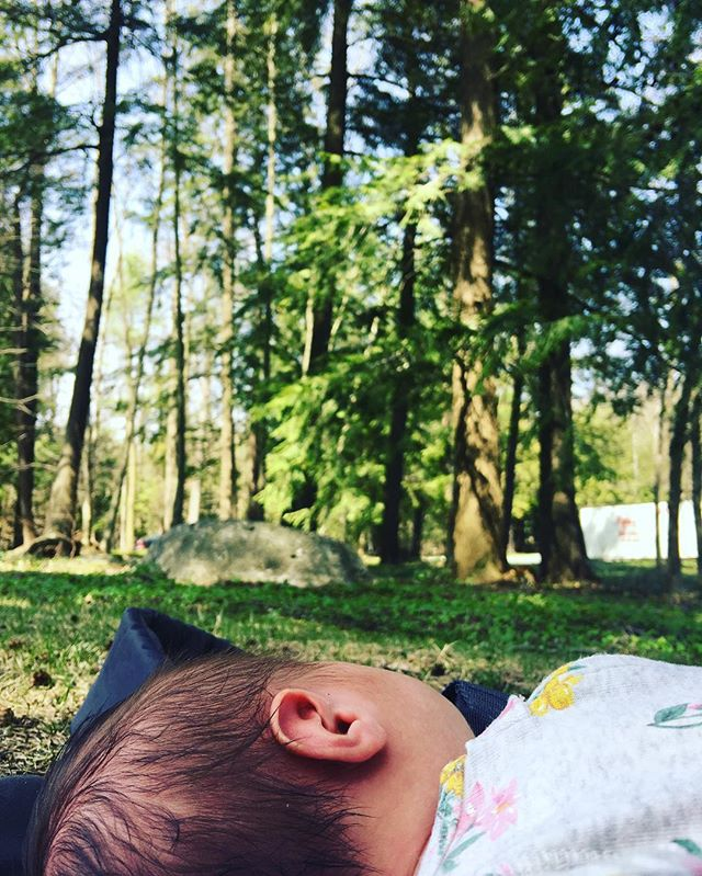 Lying together in the woods, trees I will forever be grateful for your healing magic ⭐️😘👼🏻🌲🌿 #babyavalon #avalonrose #natureheals