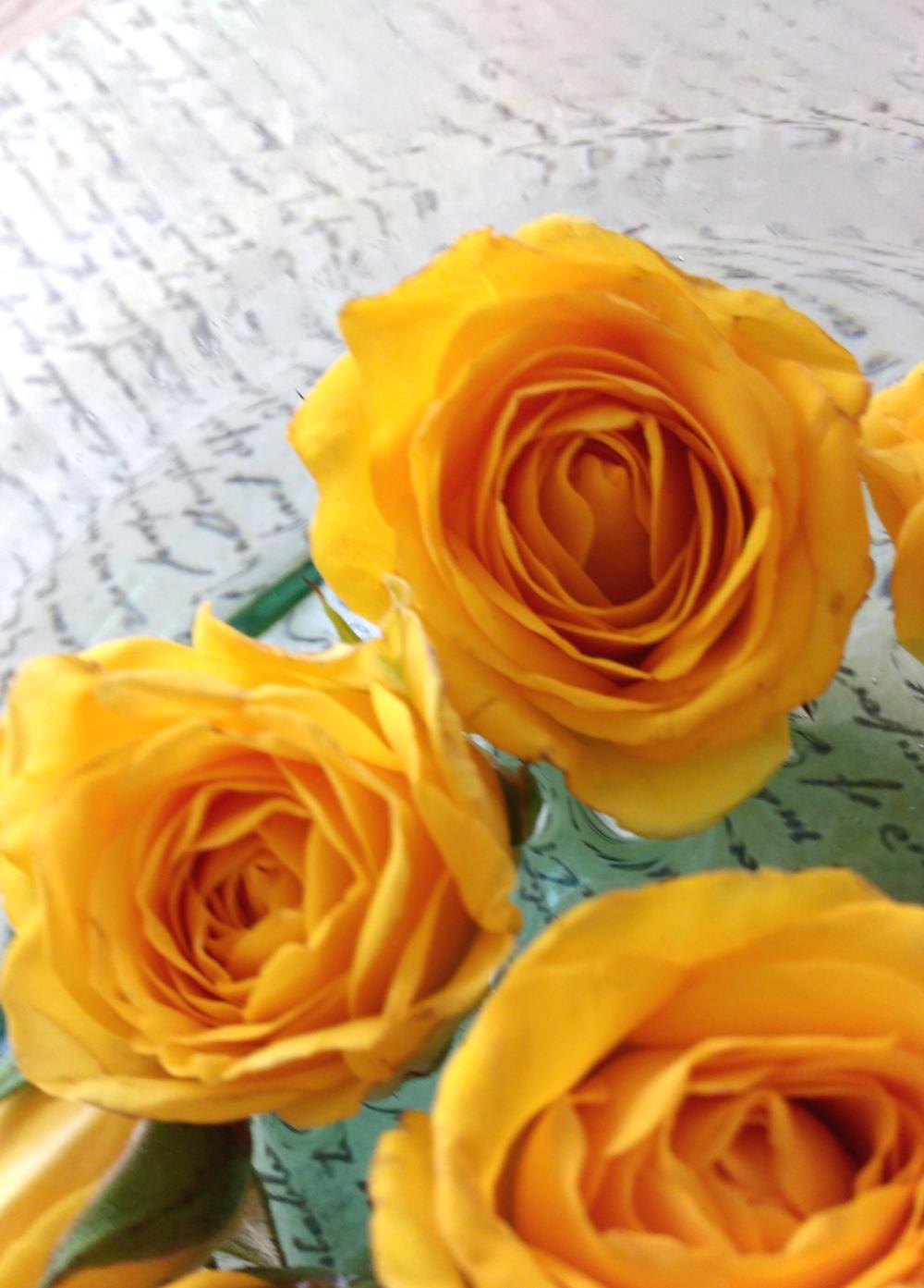 Flower Dictionary Hanabana