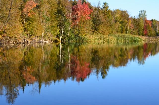Waterway in Fall