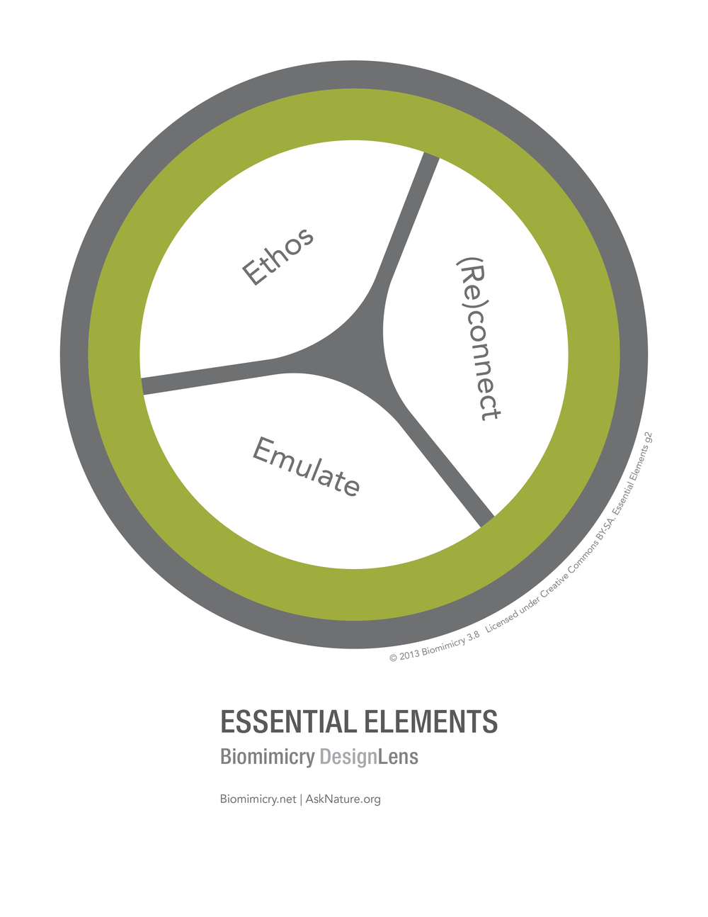 Biomimicry38_DesignLens_Essential_Elements_WEB.jpg