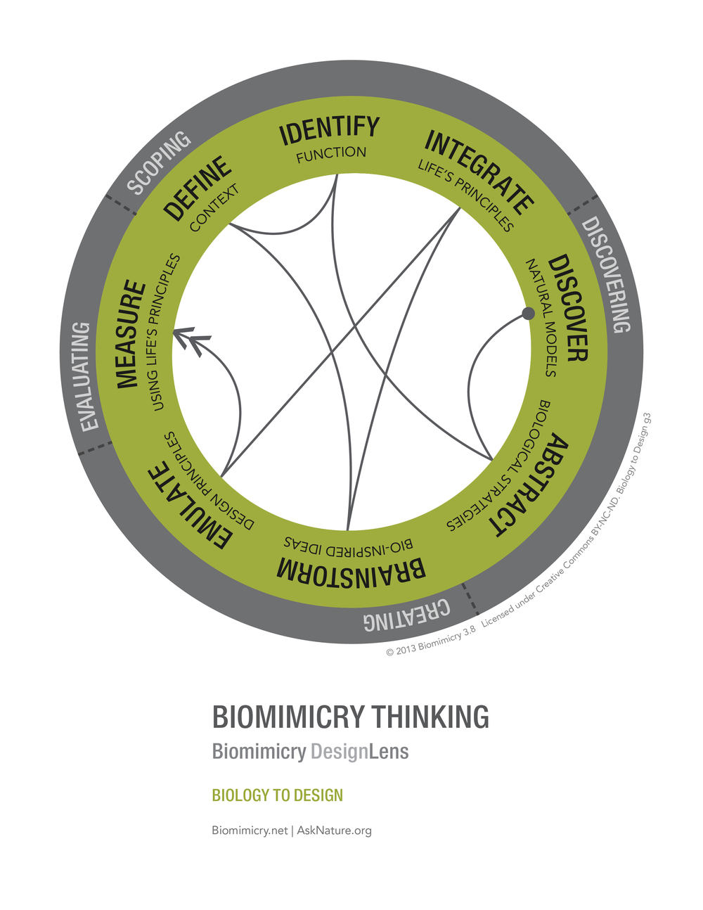 Biomimicry38_DesignLens_Biology_to_Design_WEB.jpg