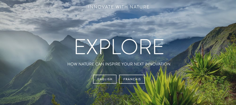 Innovate_with_nature.jpg