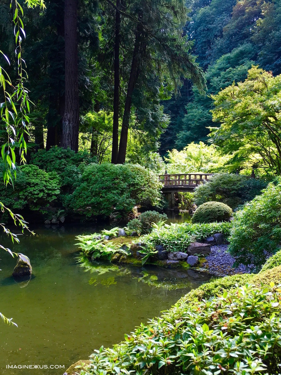 The Color Green & Washington Park
